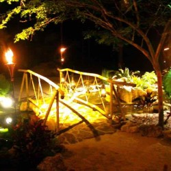 Copy of Bridge at Night