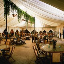 Copy of Main Tent