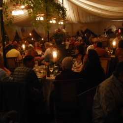 NGALA Corporate and Social Events