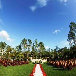 Wedding Photos 013