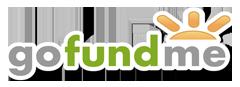 go fund me logo link